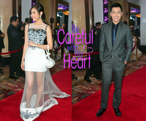 Be Careful with My Heart cast at the 8th Star Magic Ball